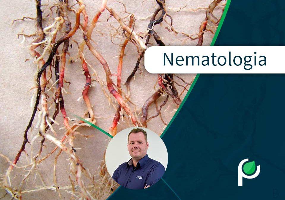 Conteúdo sobre nematologia Phytus